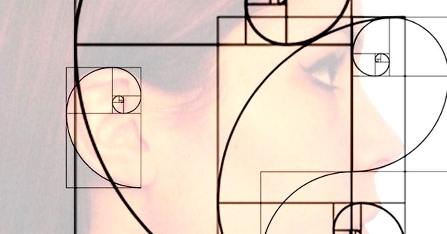 Fibonacci in Nature: The Golden Ratio and the Golden Spiral