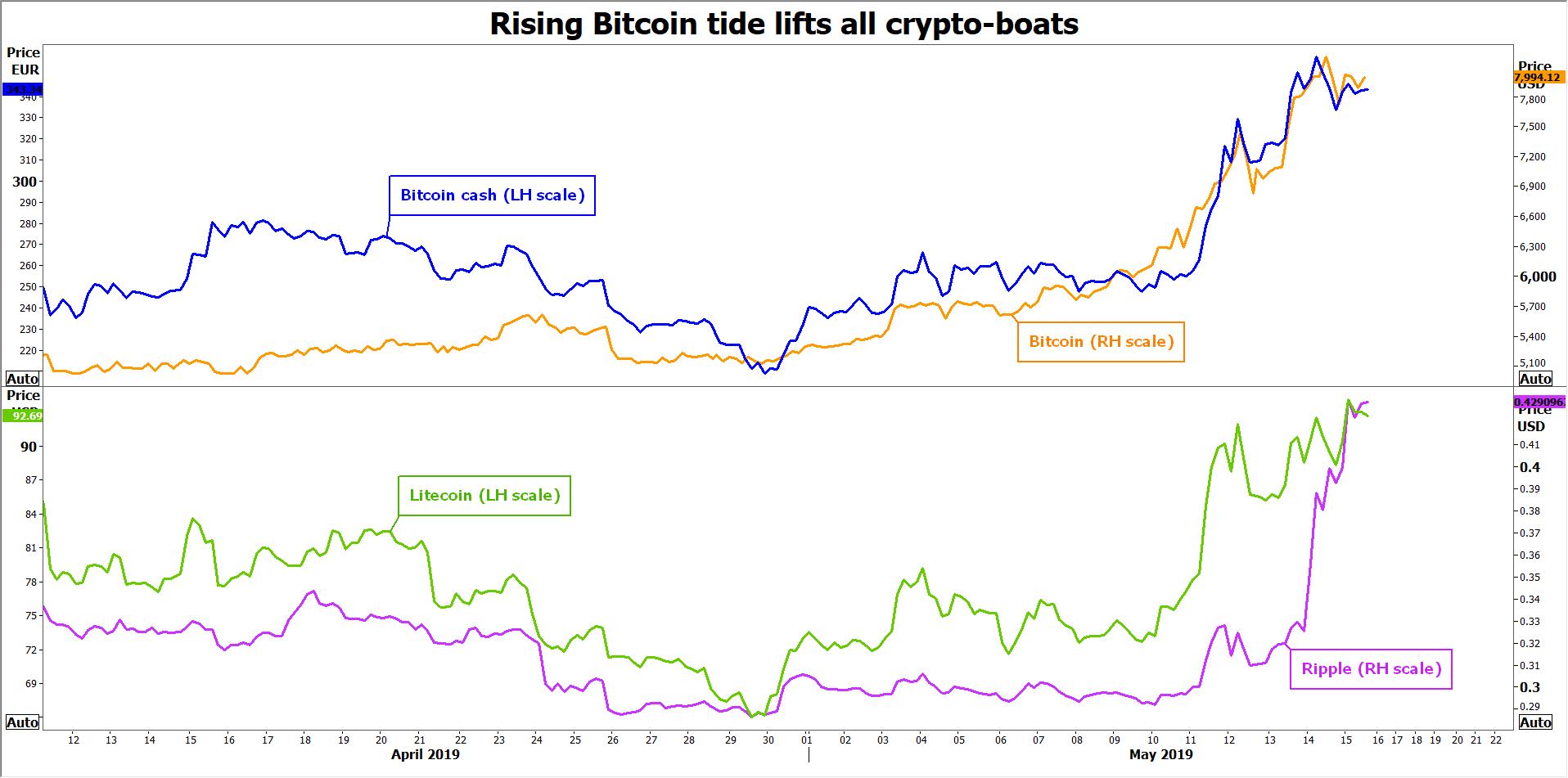 Bitcoin Cash XRP LTC